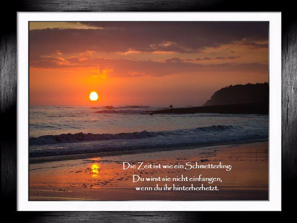 Nimm dir Zeit dich begeistern zu lassen, deine Begeisterung wird Wellen schlagen, die zu dir zurückkommen.
