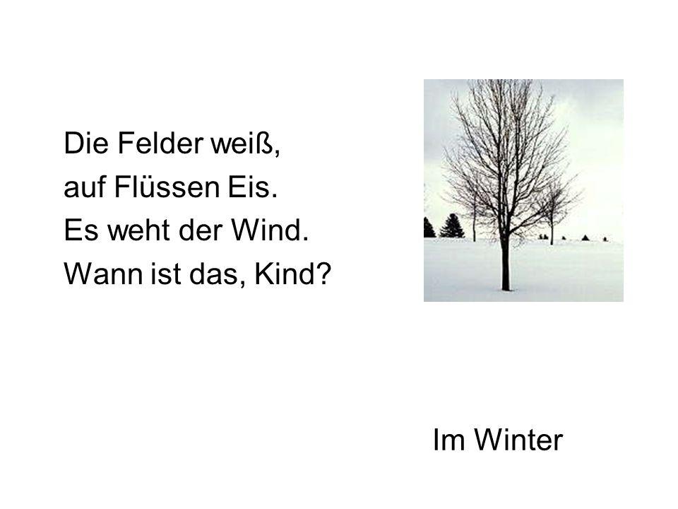 Im Winter Die Felder weiß, auf Flüssen Eis. Es weht der Wind. Wann ist das, Kind