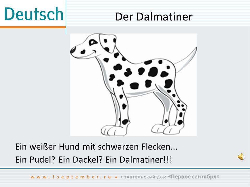 Der Dalmatiner Ein weißer Hund mit schwarzen Flecken... Ein Pudel? Ein Dackel? Ein Dalmatiner!!!