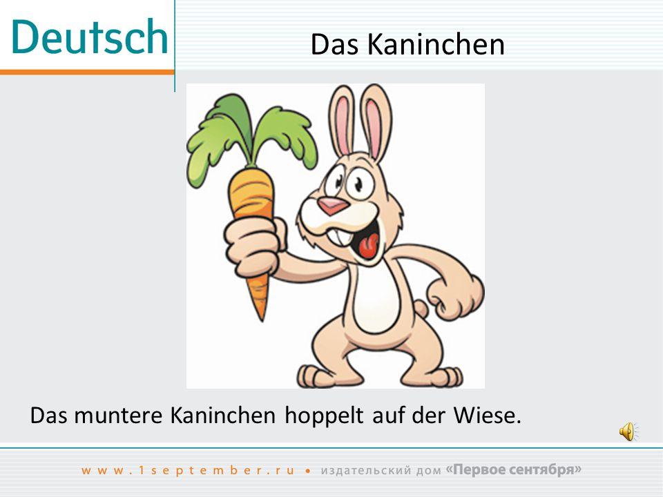 Das Kaninchen Das muntere Kaninchen hoppelt auf der Wiese.