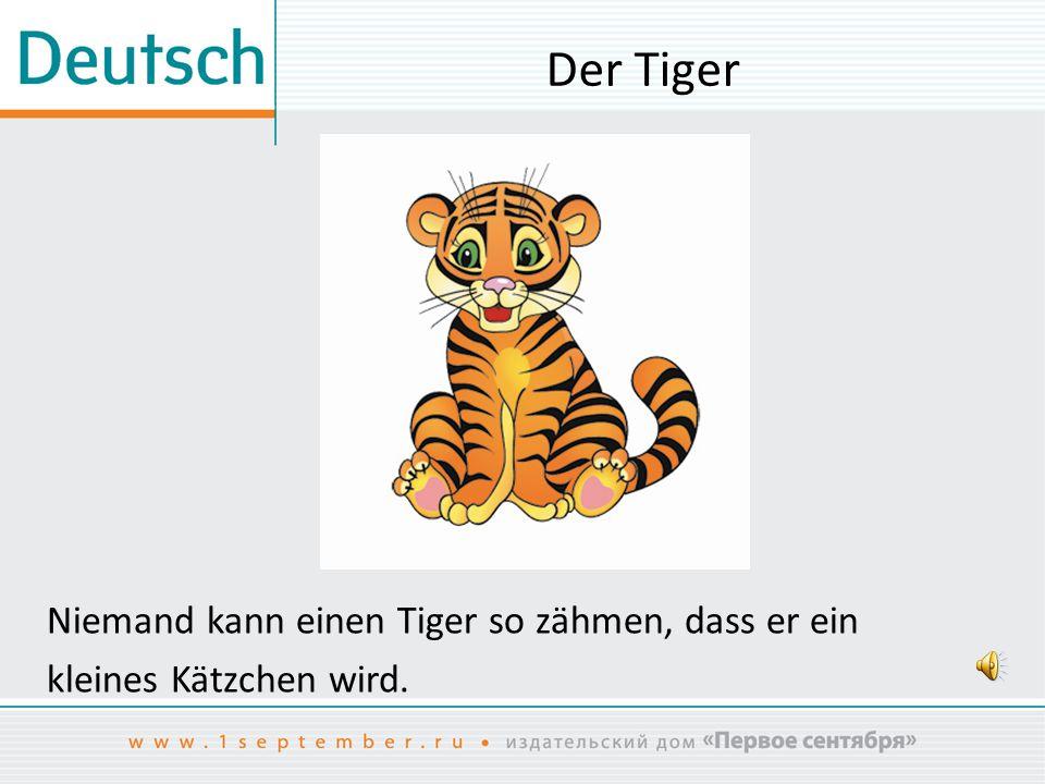 Der Tiger Niemand kann einen Tiger so zähmen, dass er ein kleines Kätzchen wird.