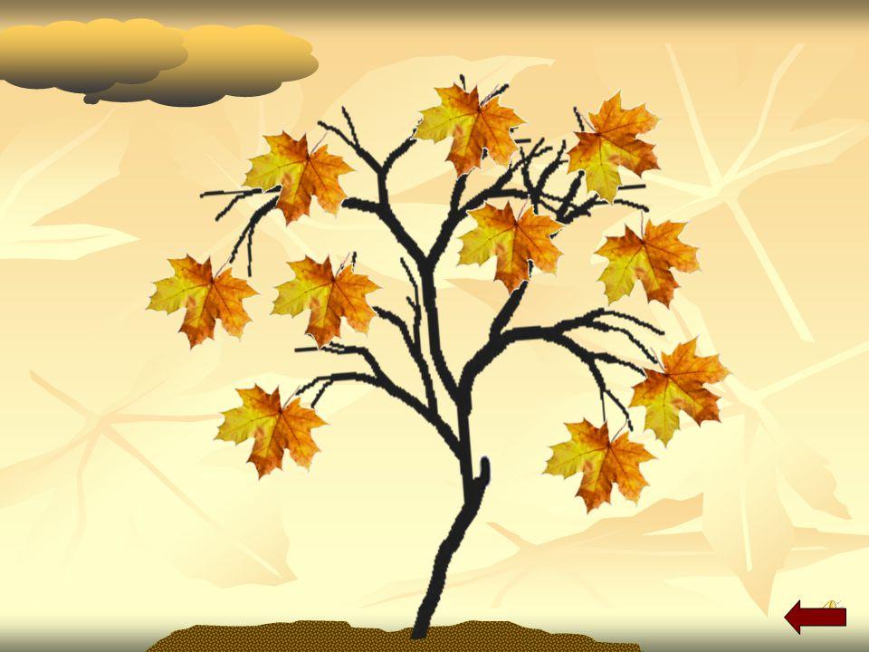 Ubersetzt ins Deutsche: Многие листья ещё зелёные. Многие листья ещё зелёные. Осенью погода бывает хорошей. Осенью погода бывает хорошей. Листья падаю