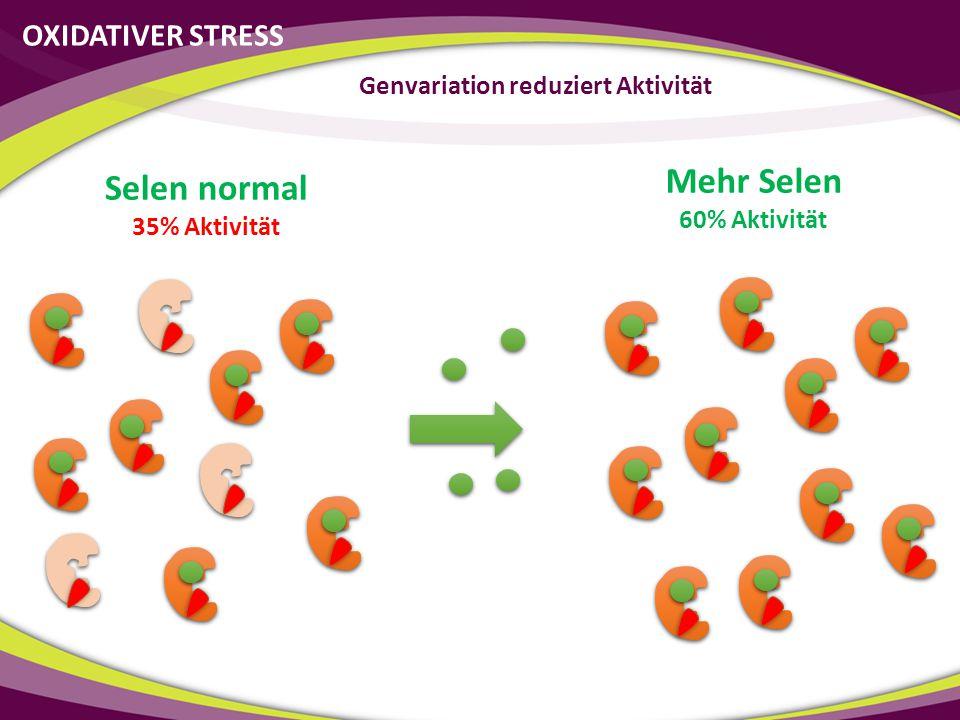 OXIDATIVER STRESS Genvariation reduziert Aktivität Selen normal 35% Aktivität Mehr Selen 60% Aktivität