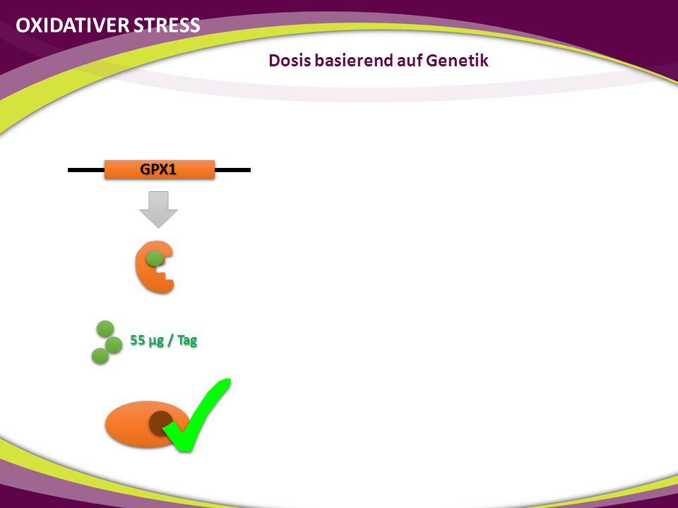 GPX1 55 µg / Tag OXIDATIVER STRESS Dosis basierend auf Genetik