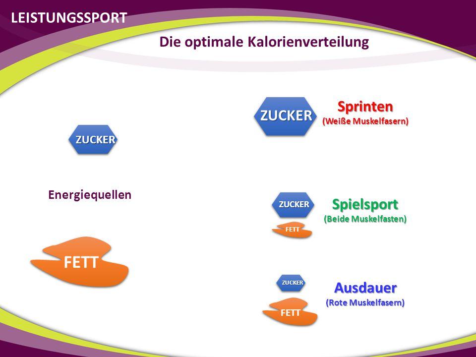 LEISTUNGSSPORT Die optimale Kalorienverteilung ZUCKER FETT Sprinten (Weiße Muskelfasern) Ausdauer (Rote Muskelfasern) Spielsport (Beide Muskelfasten)