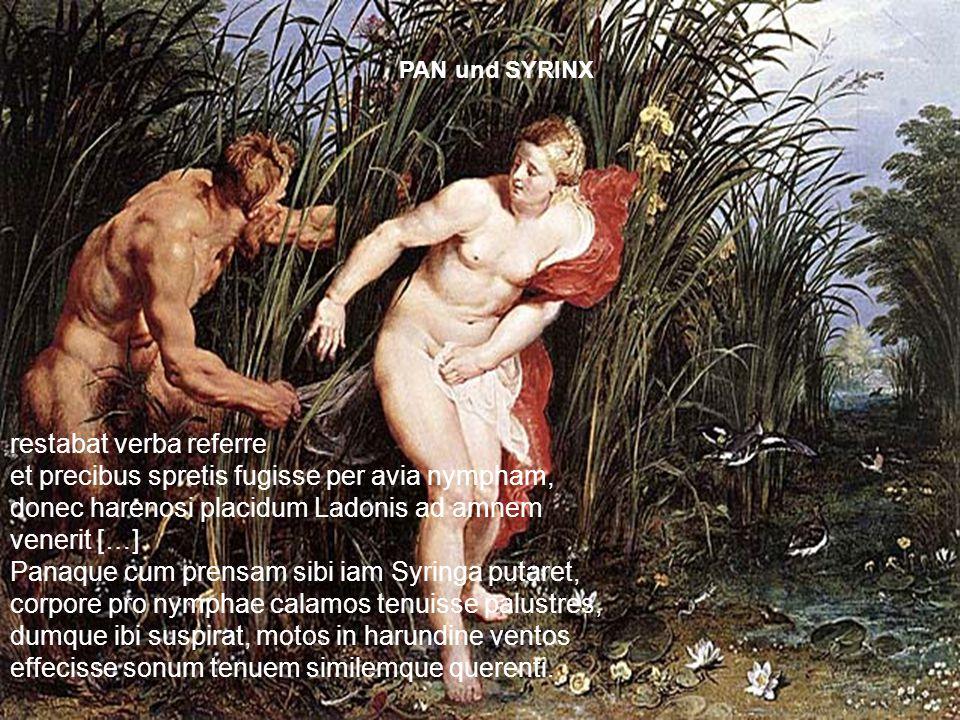 restabat verba referre et precibus spretis fugisse per avia nympham, donec harenosi placidum Ladonis ad amnem venerit […] Panaque cum prensam sibi iam
