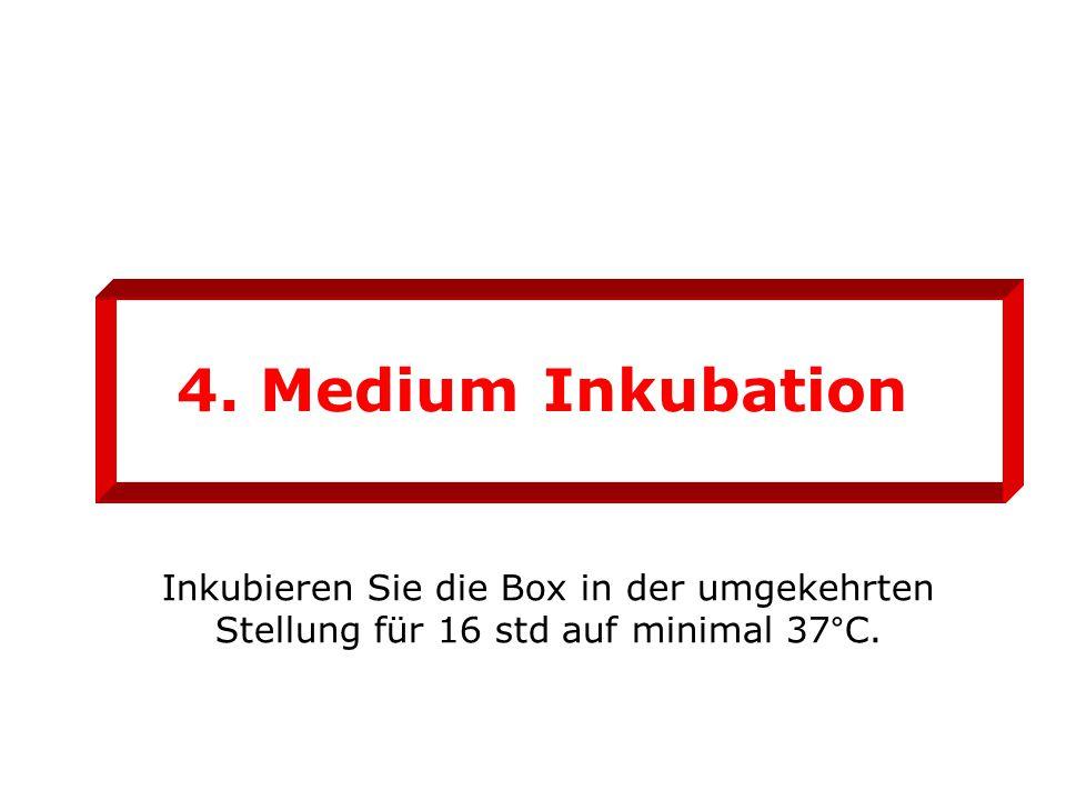 4. Medium Inkubation Inkubieren Sie die Box in der umgekehrten Stellung für 16 std auf minimal 37°C.