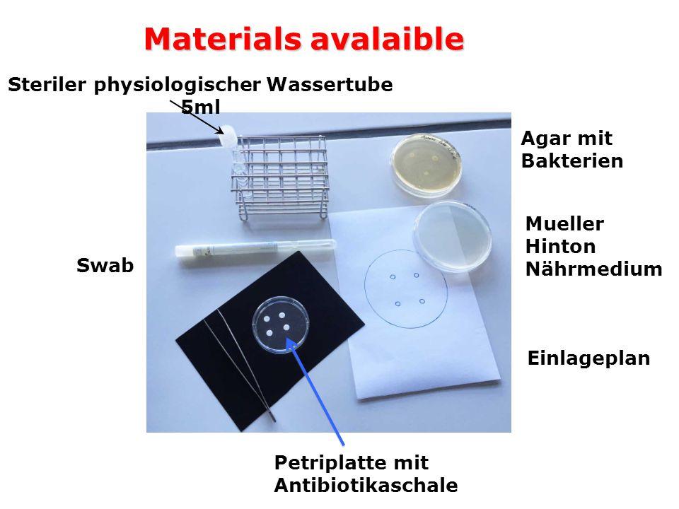 Materials avalaible Swab Agar mit Bakterien Petriplatte mit Antibiotikaschale Mueller Hinton Nährmedium Einlageplan Steriler physiologischer Wassertube 5ml