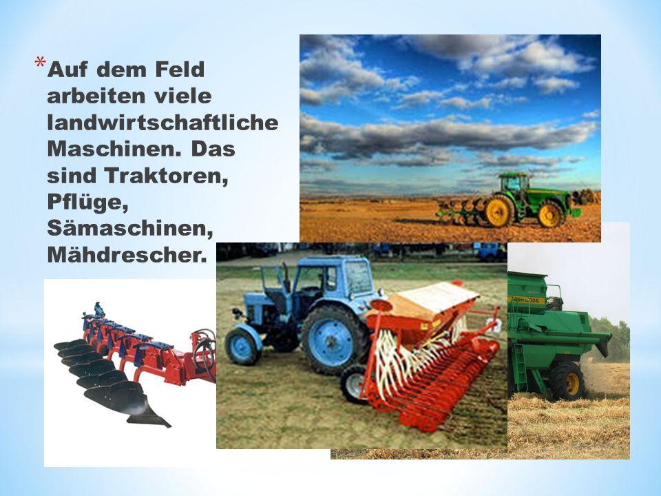 * Auf dem Feld arbeiten viele landwirtschaftliche Maschinen. Das sind Traktoren, Pflüge, Sämaschinen, Mähdrescher.