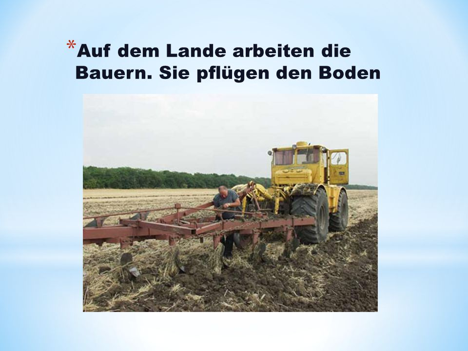 * Auf dem Lande arbeiten die Bauern. Sie pflügen den Boden
