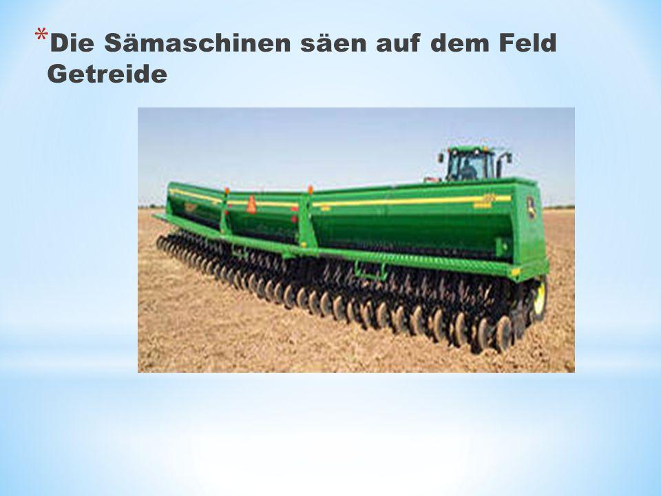 * Die Sämaschinen säen auf dem Feld Getreide