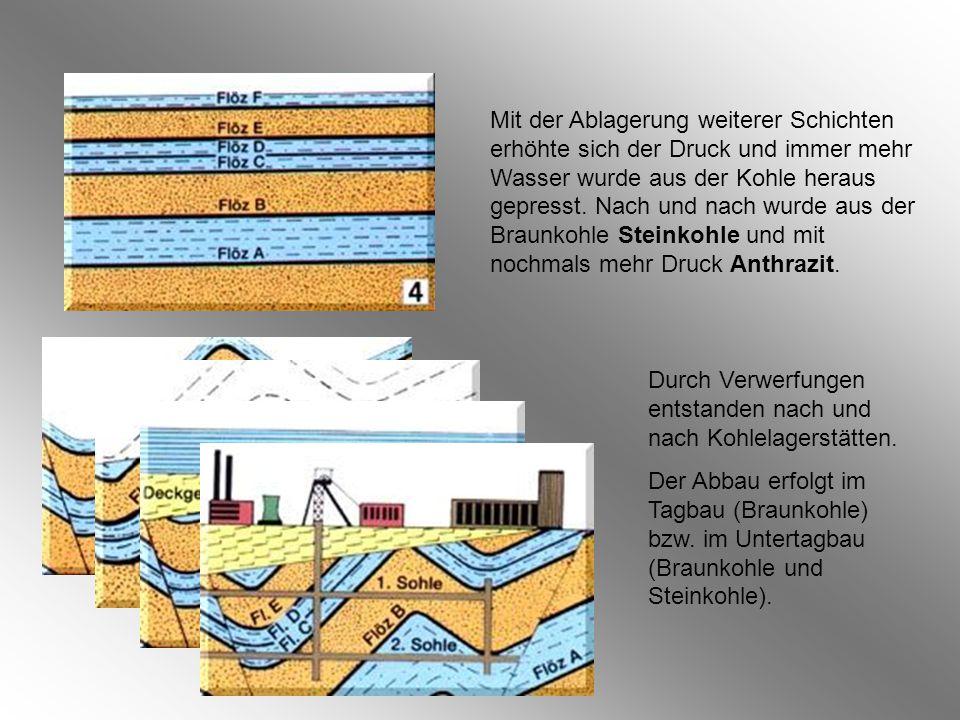 Mit der Ablagerung weiterer Schichten erhöhte sich der Druck und immer mehr Wasser wurde aus der Kohle heraus gepresst.