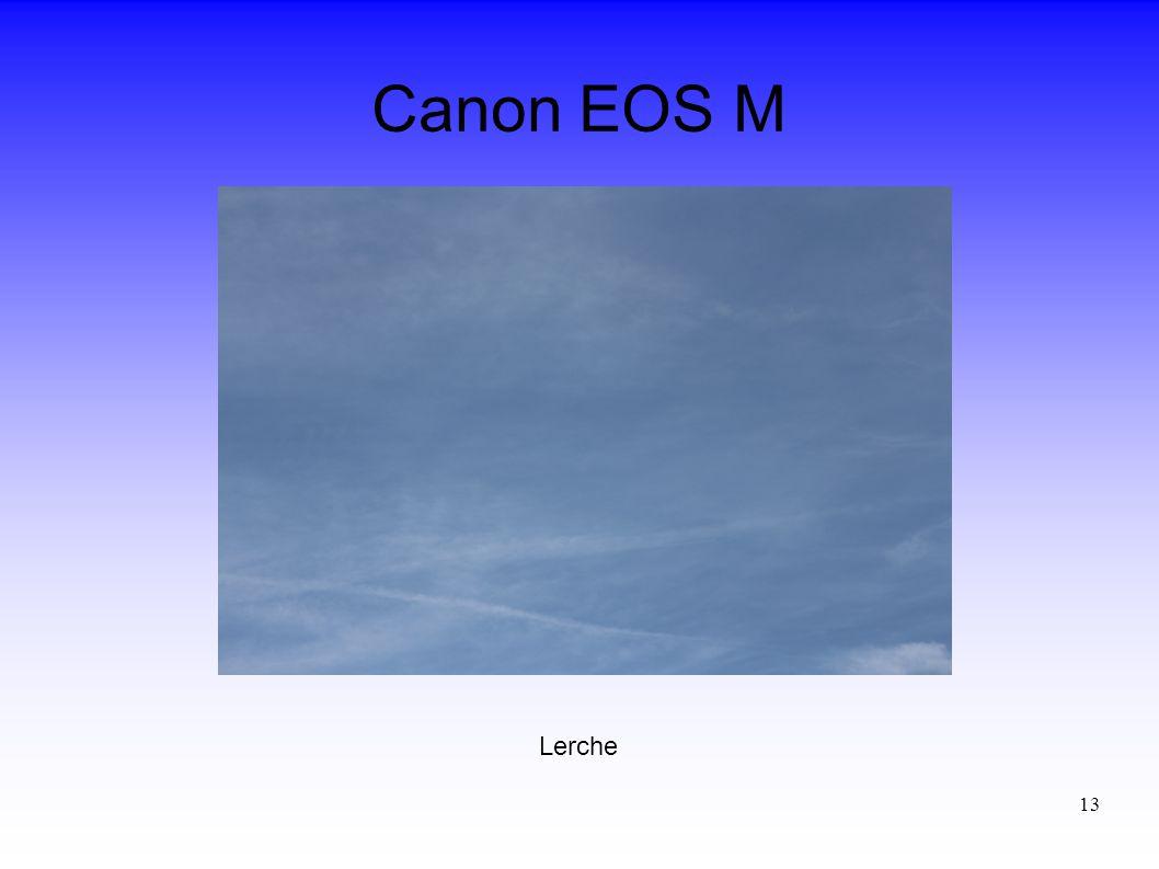 13 Canon EOS M Lerche