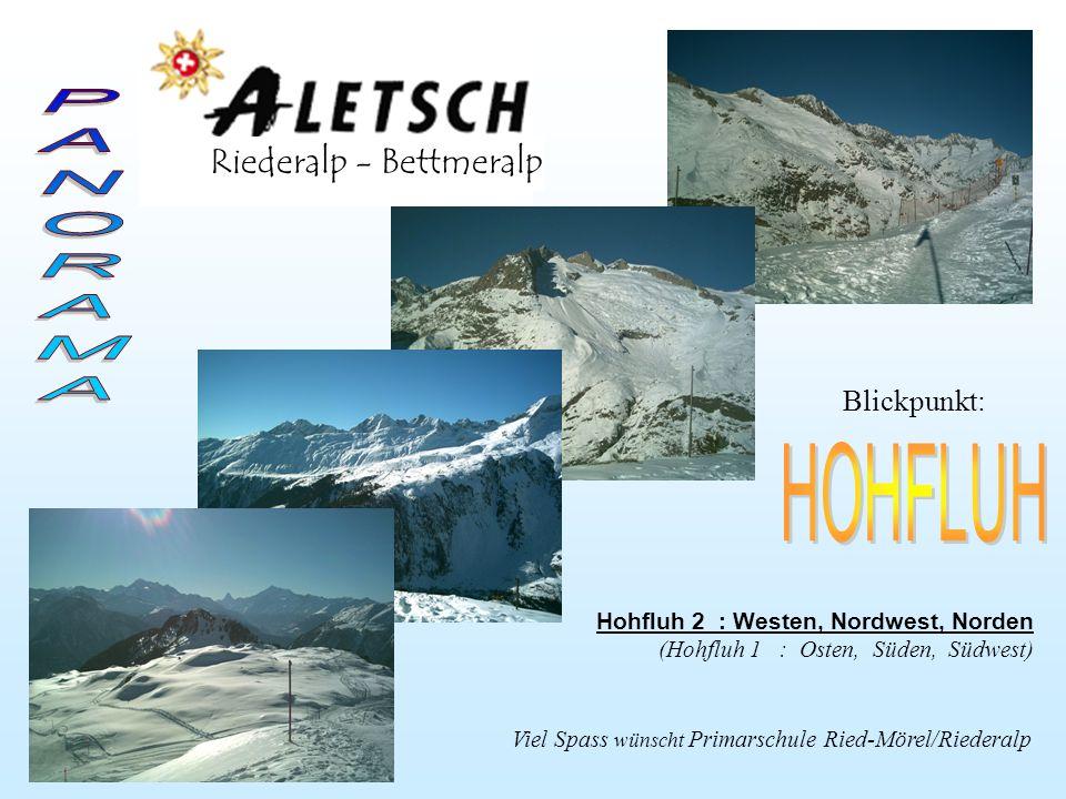 Driestgletscher Fusshörner Oberaletsch- gletscher Zenbächen- gletscher RotstockGeisshorn Driest