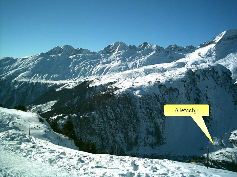 Aletschji