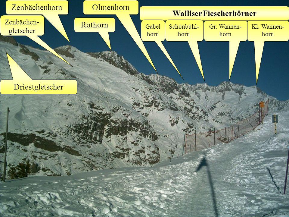 Zenbächenhorn Zenbächen- gletscher Kl. Wannen- horn Gr.