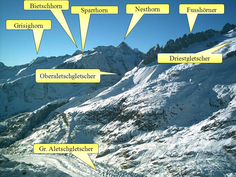 Gr. Aletschgletscher Grisighorn Bietschhorn Sparrhorn Nesthorn Fusshörner Driestgletscher Oberaletschgletscher