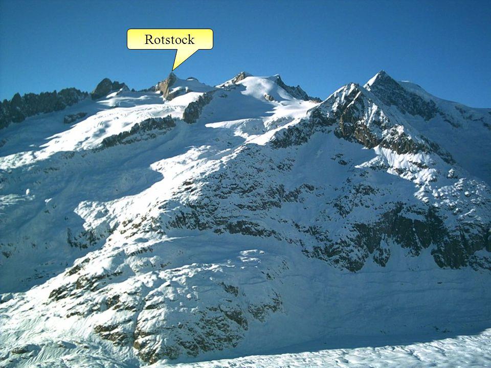 Rotstock