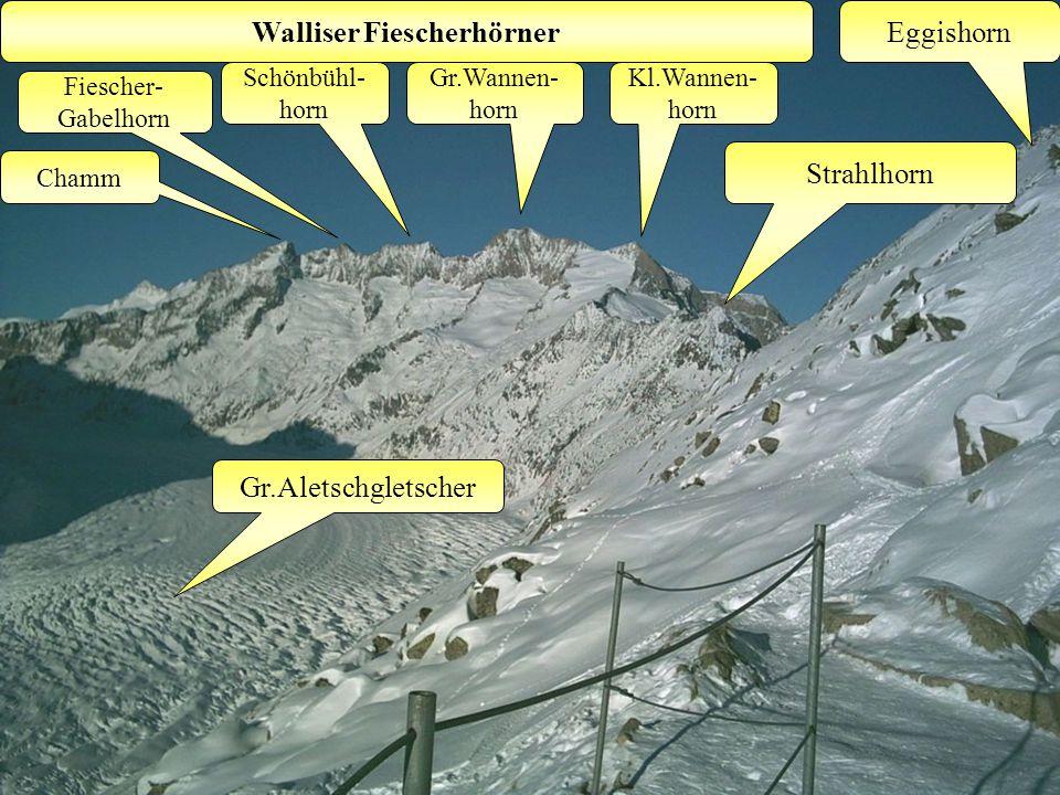 Eggishorn Kl.Wannen- horn Gr.Aletschgletscher Gr.Wannen- horn Walliser Fiescherhörner Schönbühl- horn Fiescher- Gabelhorn Strahlhorn Chamm