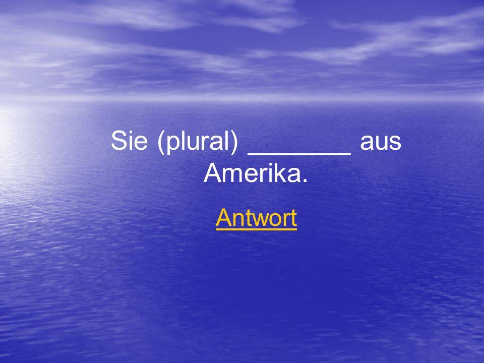 Sie (plural) _______ aus Amerika. Antwort