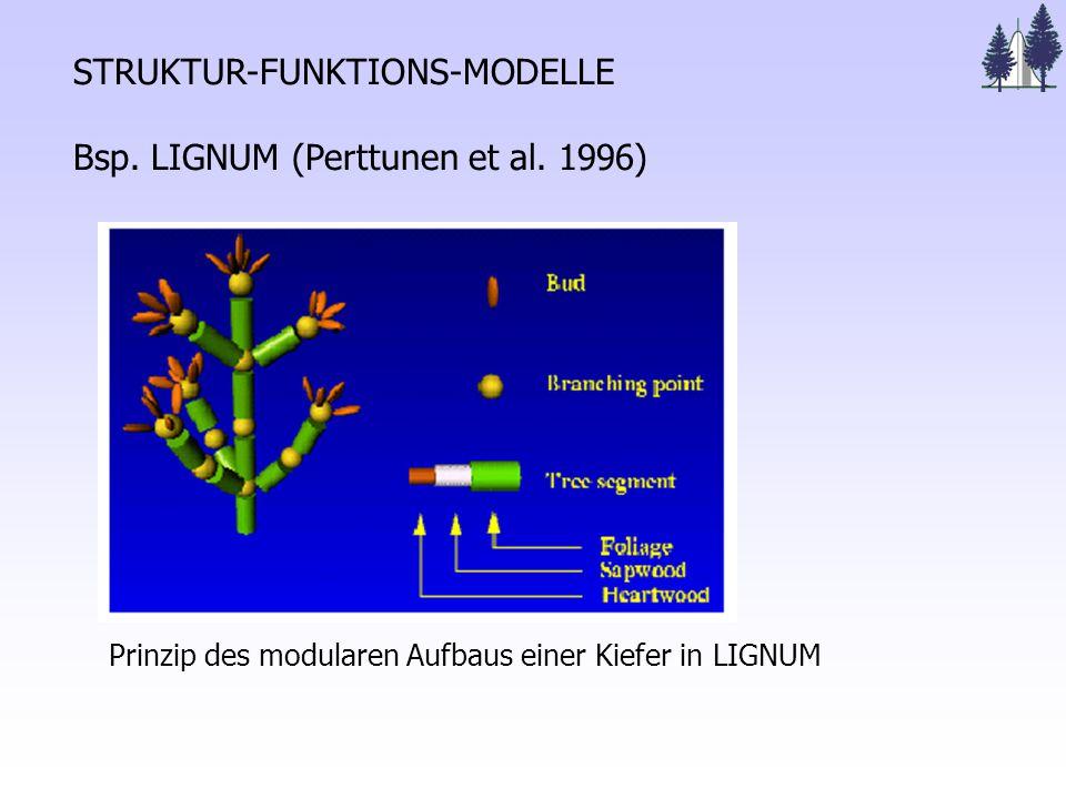 STRUKTUR-FUNKTIONS-MODELLE Bsp. LIGNUM (Perttunen et al.