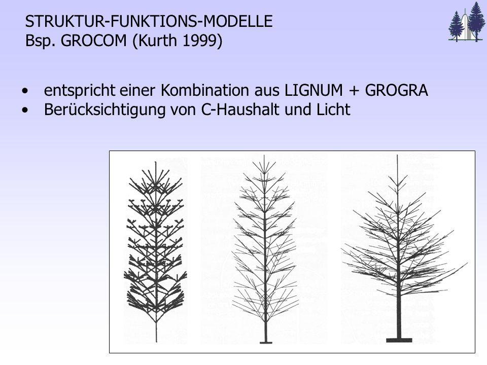 STRUKTUR-FUNKTIONS-MODELLE Bsp.