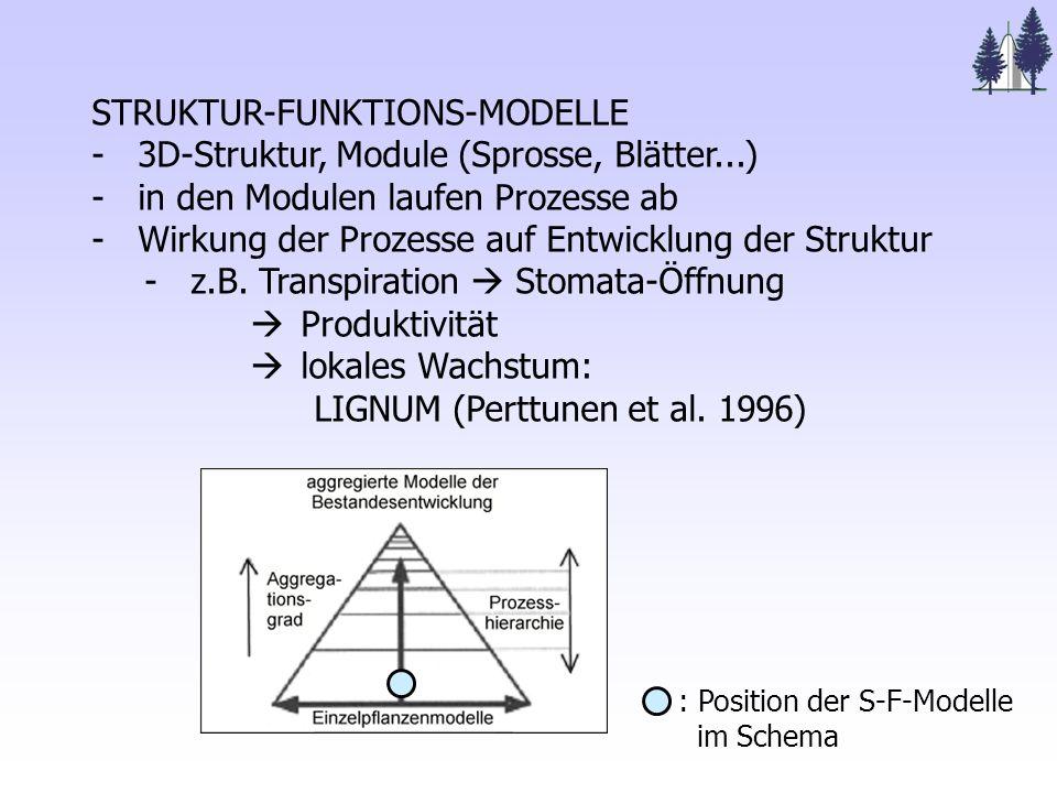 Struktur- Funktions- Modelle modularer Aufbau, Kombination von 3-D- Strukturen und Prozessen (aus Breckling 1996)