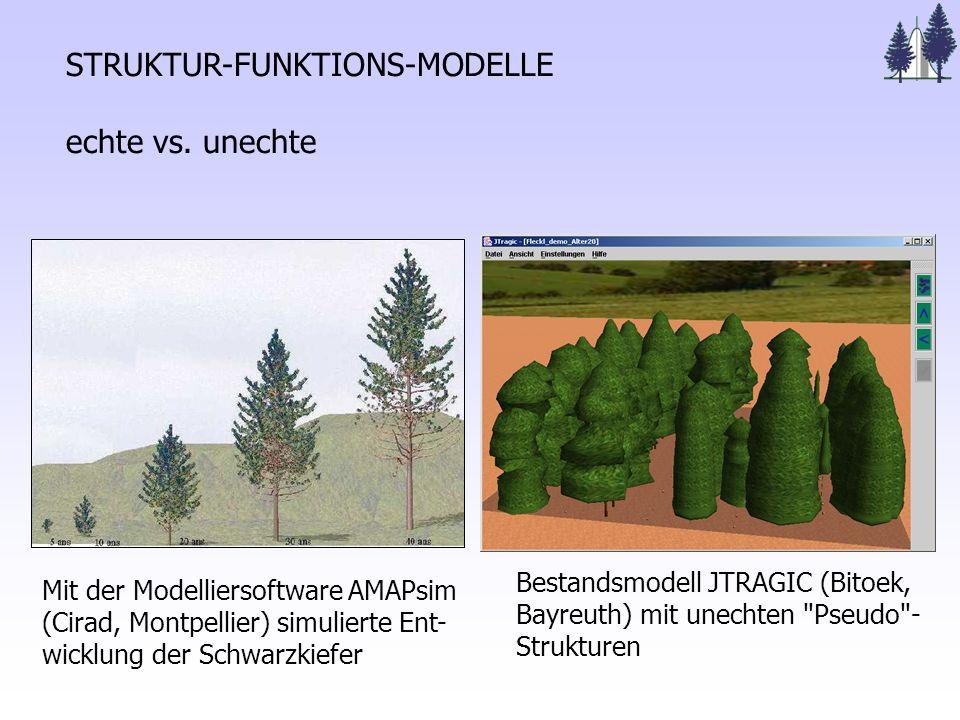 STRUKTUR-FUNKTIONS-MODELLE echte vs.