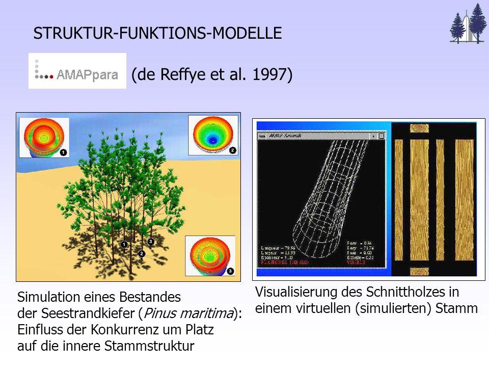 STRUKTUR-FUNKTIONS-MODELLE Visualisierung des Schnittholzes in einem virtuellen (simulierten) Stamm (de Reffye et al.