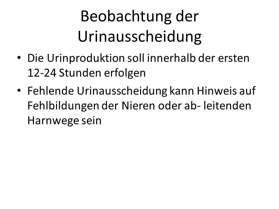 Beobachtung der Urinausscheidung Die Urinproduktion soll innerhalb der ersten 12-24 Stunden erfolgen Fehlende Urinausscheidung kann Hinweis auf Fehlbi