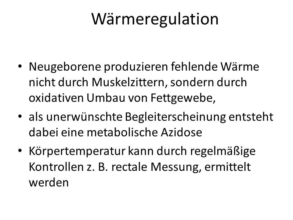 Wärmeregulation Neugeborene produzieren fehlende Wärme nicht durch Muskelzittern, sondern durch oxidativen Umbau von Fettgewebe, als unerwünschte Begl