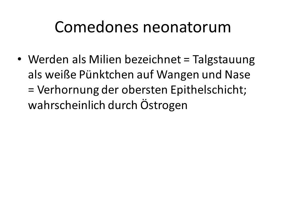Comedones neonatorum Werden als Milien bezeichnet = Talgstauung als weiße Pünktchen auf Wangen und Nase = Verhornung der obersten Epithelschicht; wahr