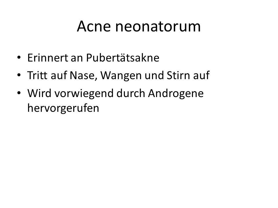 Acne neonatorum Erinnert an Pubertätsakne Tritt auf Nase, Wangen und Stirn auf Wird vorwiegend durch Androgene hervorgerufen