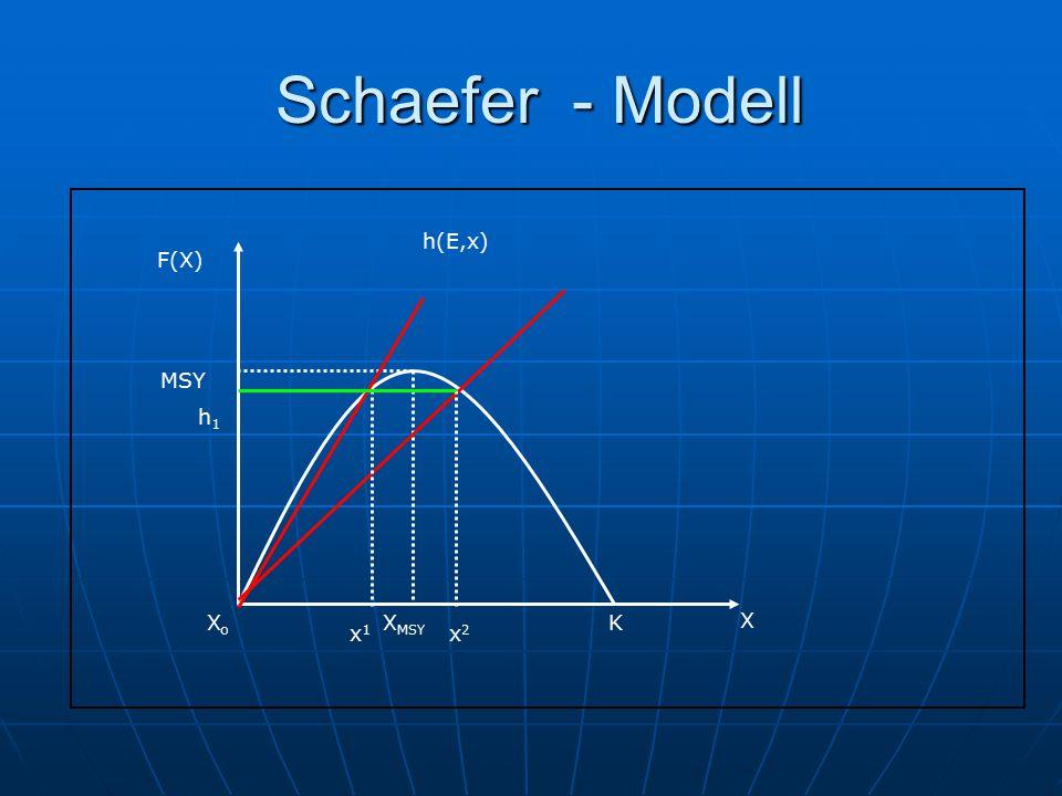 Schaefer - Modell Schaefer - Modell F(X) X X MSY K MSY XoXo x1x1 x2x2 h1h1 h(E,x)