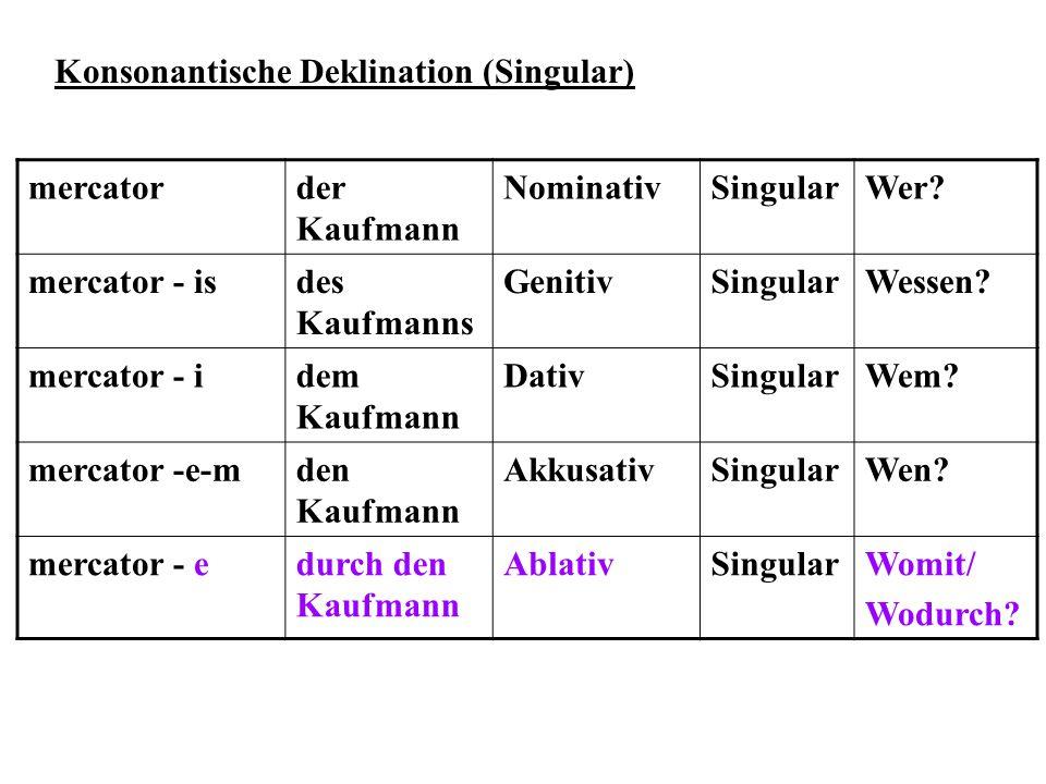 Konsonantische Deklination (Singular) mercatorder Kaufmann NominativSingularWer? mercator - isdes Kaufmanns GenitivSingularWessen? mercator - idem Kau
