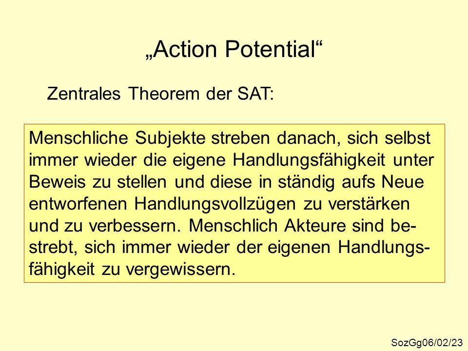 """""""Action Potential"""" SozGg06/02/23 Zentrales Theorem der SAT: Menschliche Subjekte streben danach, sich selbst immer wieder die eigene Handlungsfähigkei"""