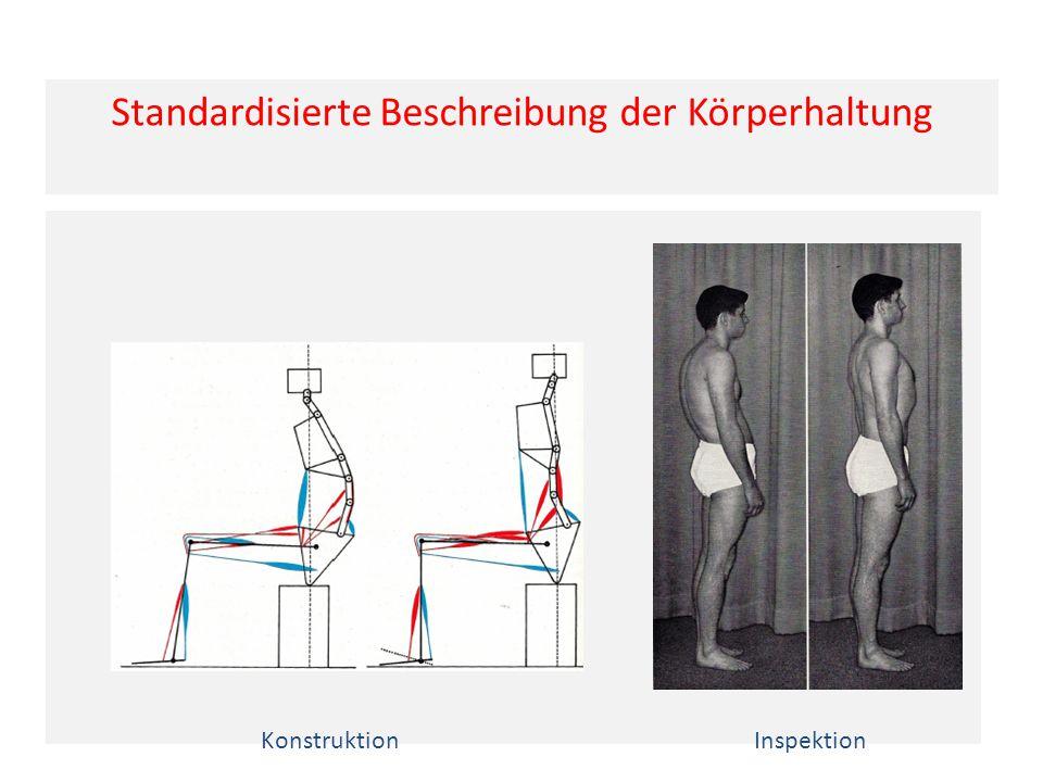 Standardisierte Beschreibung der Körperhaltung KonstruktionInspektion