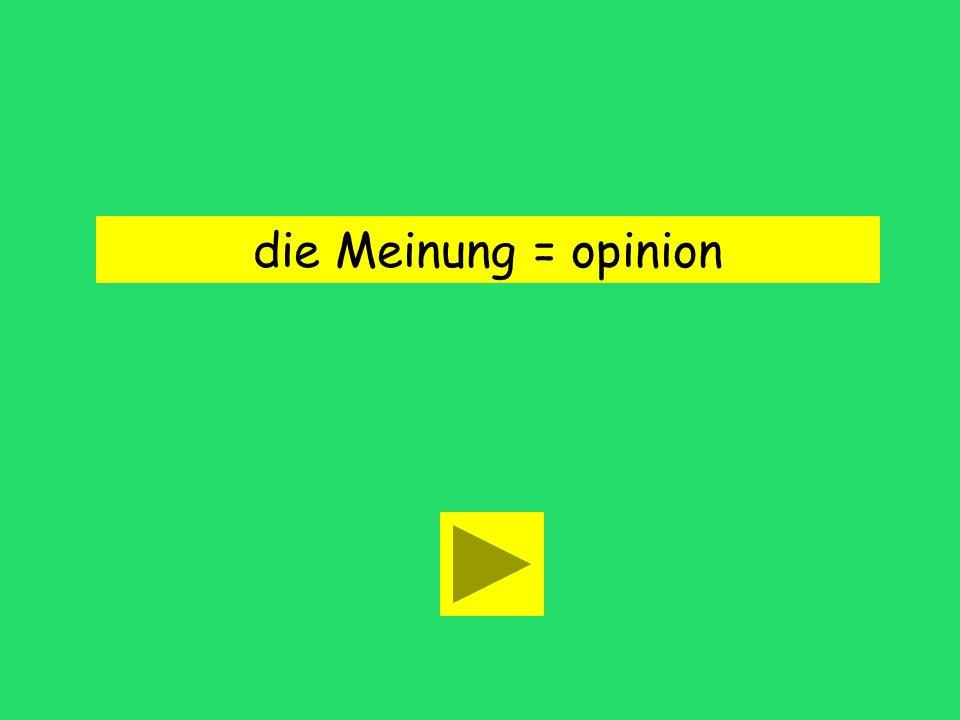 die Meinung = opinion