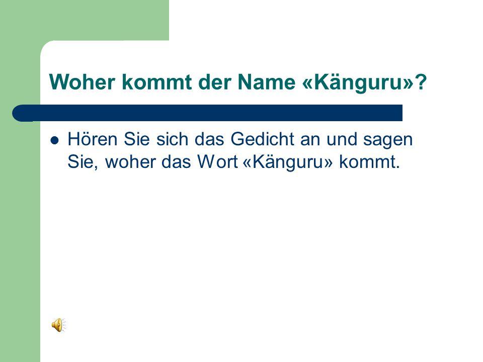 Woher kommt der Name «Känguru».