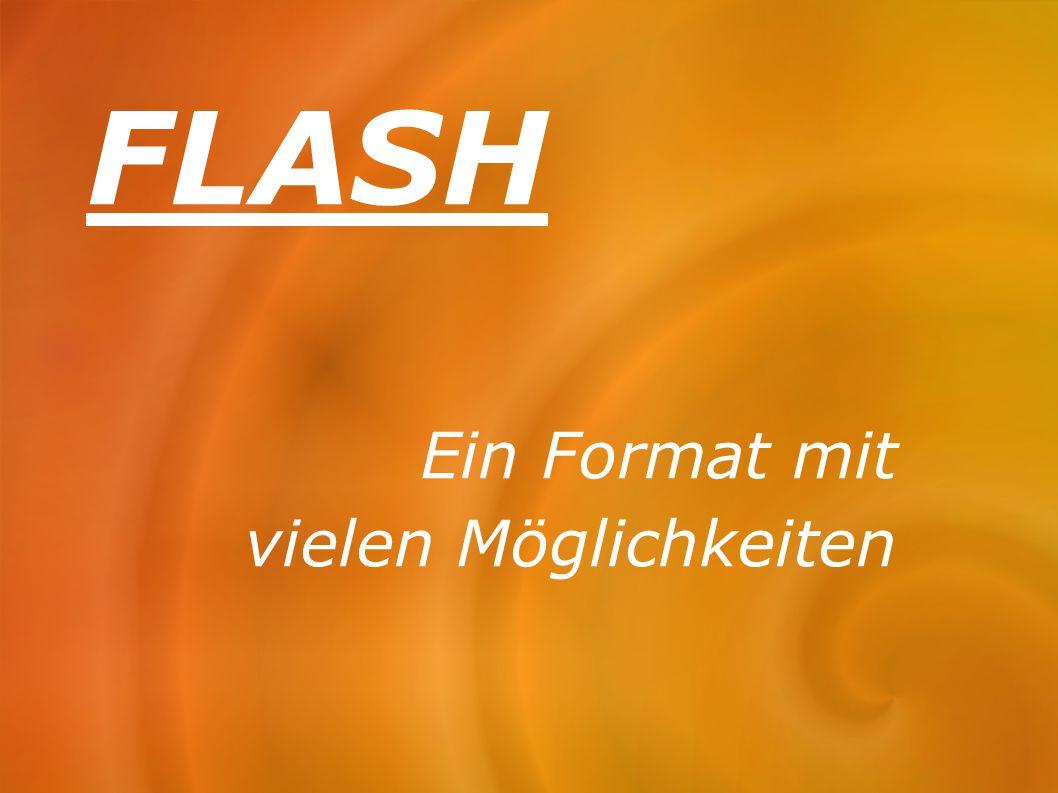 FLASH Ein Format mit vielen Möglichkeiten