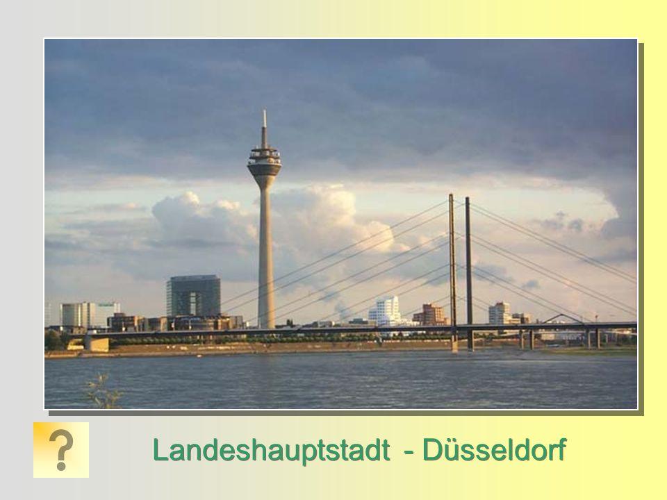 Landeshauptstadt - Düsseldorf