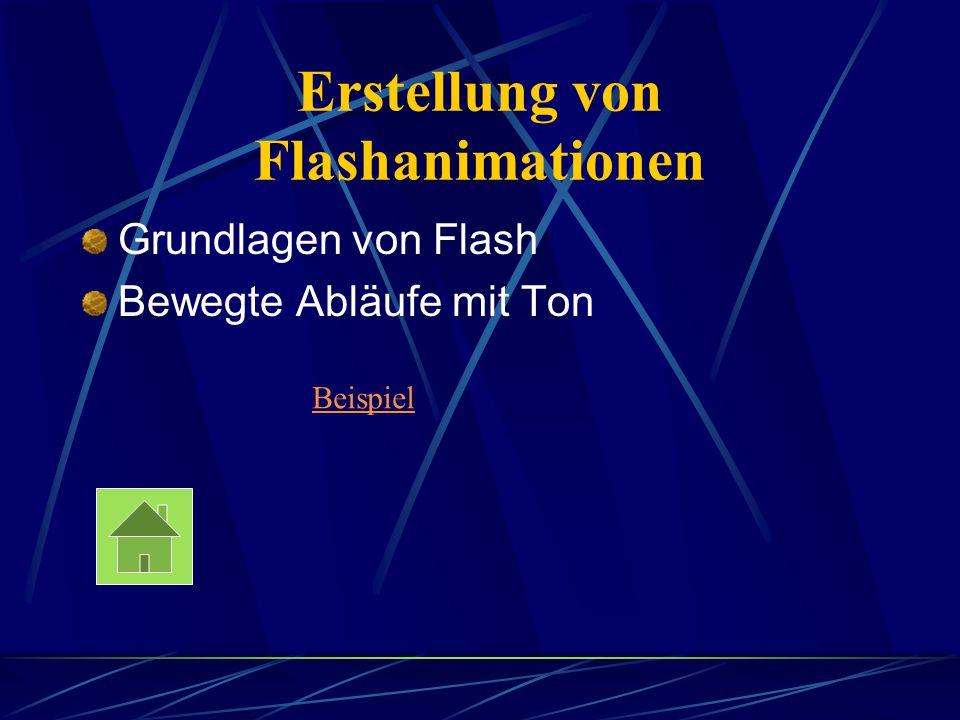 Erstellung von Flashanimationen Grundlagen von Flash Bewegte Abläufe mit Ton Beispiel