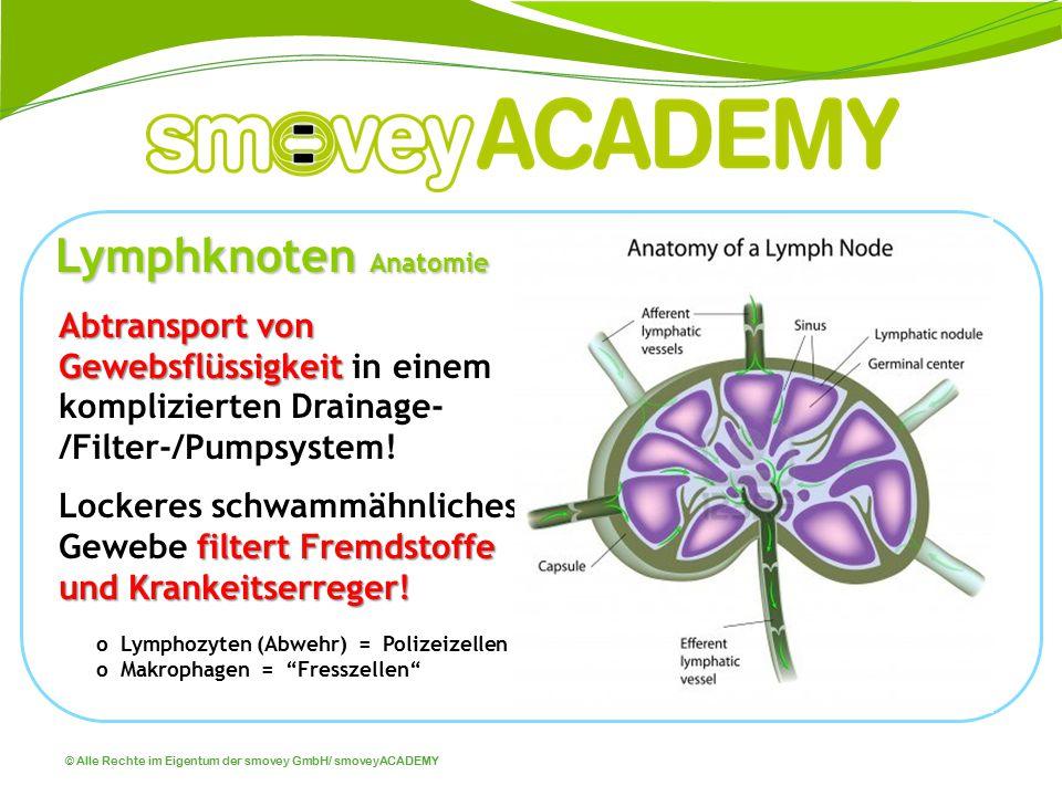 © Alle Rechte im Eigentum der smovey GmbH/ smoveyACADEMY Abtransport von Gewebsflüssigkeit Abtransport von Gewebsflüssigkeit in einem komplizierten Dr