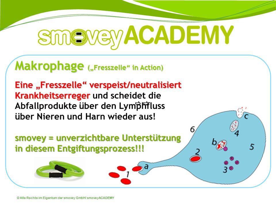 """© Alle Rechte im Eigentum der smovey GmbH/ smoveyACADEMY Makrophage (""""Fresszelle"""" in Action) Eine """"Fresszelle"""" verspeist/neutralisiert Krankheitserreg"""