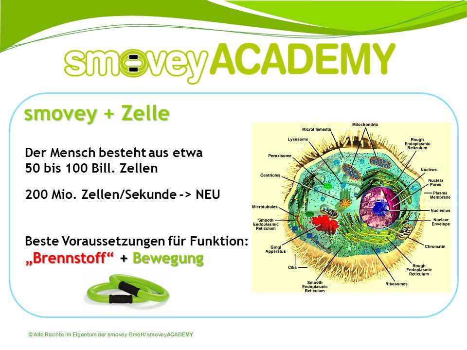© Alle Rechte im Eigentum der smovey GmbH/ smoveyACADEMY Aktivierung der Zellatmung Aktivierung aller biochemischen Prozesse im menschlichen System Entschlackung/Entgiftung … Die Zellmembrane, aktiviert sich, dadurch funktioniert das Kanalsystem der Zelle besser, die Mitochondrien beginnen optimal zu arbeiten (Verbrennung = Energie).