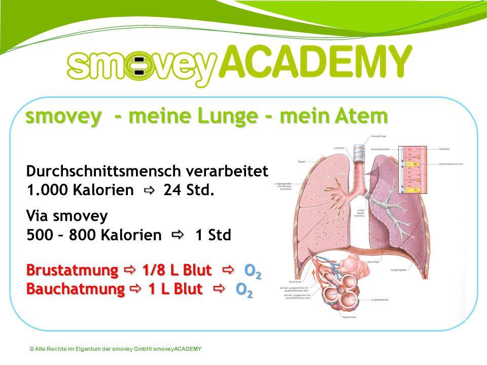 © Alle Rechte im Eigentum der smovey GmbH/ smoveyACADEMY smovey - meine Lunge - mein Atem 80 – 120 m 2 Lungengröße (größtes Organ) 750 Mill.