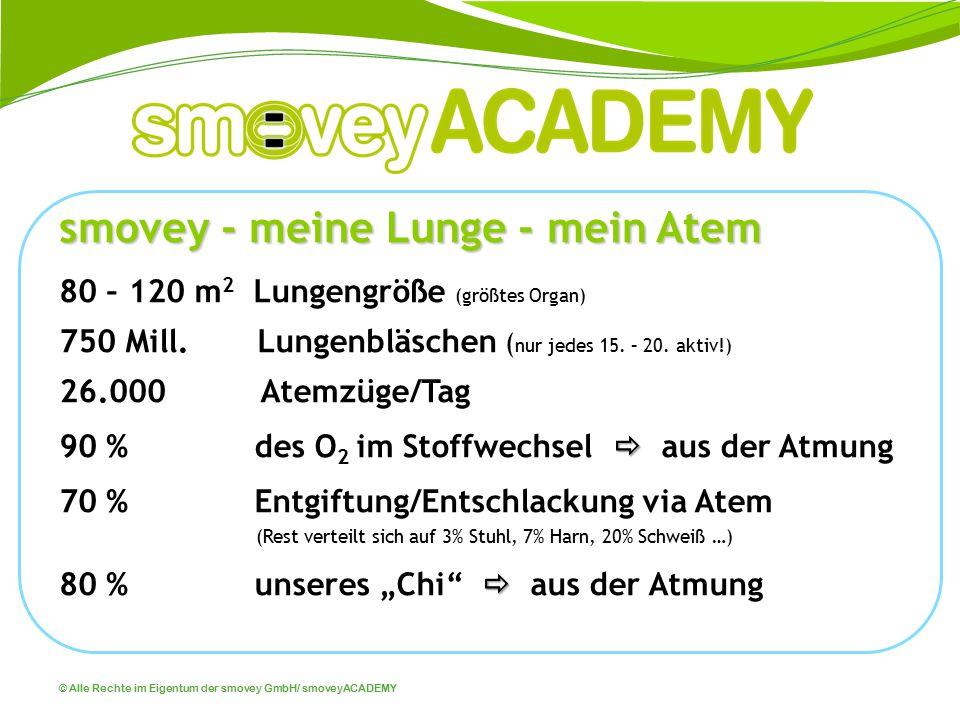 © Alle Rechte im Eigentum der smovey GmbH/ smoveyACADEMY smovey - meine Lunge - mein Atem 80 – 120 m 2 Lungengröße (größtes Organ) 750 Mill. Lungenblä