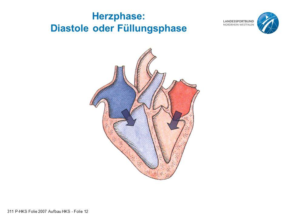 Herzphase: Diastole oder Füllungsphase 311 P-HKS Folie 2007 Aufbau HKS - Folie 12