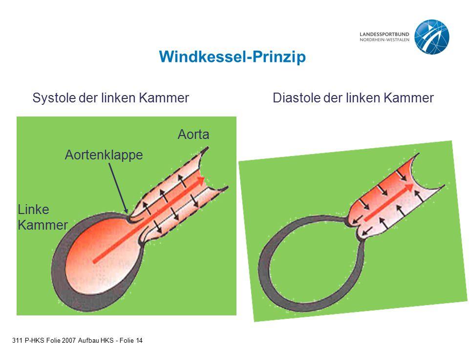 Windkessel-Prinzip 311 P-HKS Folie 2007 Aufbau HKS - Folie 14 Linke Kammer Aortenklappe Aorta Systole der linken KammerDiastole der linken Kammer