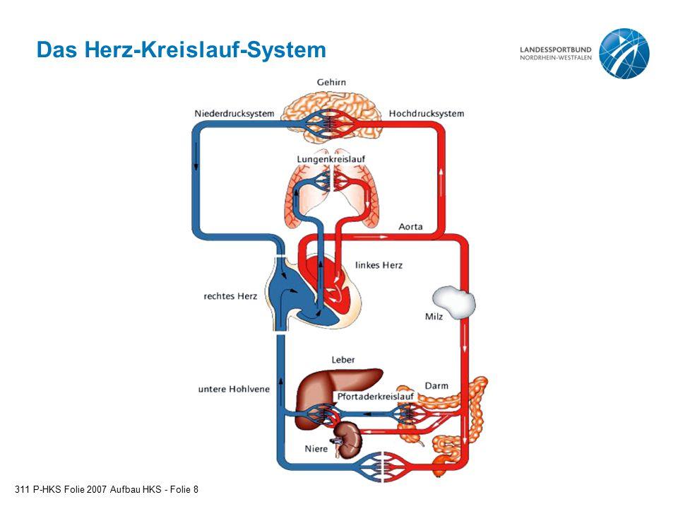 Das Herz-Kreislauf-System 311 P-HKS Folie 2007 Aufbau HKS - Folie 8